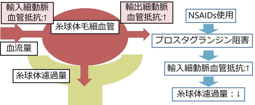 腎 機能 ロキソニン
