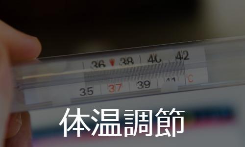 体温調節 thermoregulation