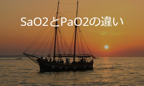 酸素を届ける:SaO2とPaO2の違い