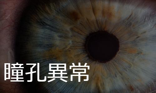 瞳孔異常 pupil disorders