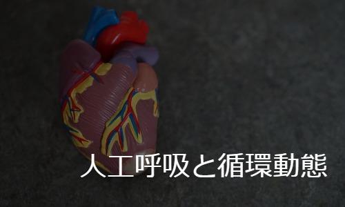 人工呼吸管理と循環動態