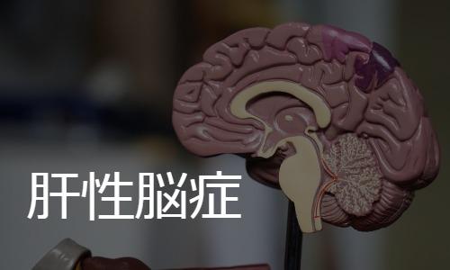 肝性脳症 hepatic encephalopathy
