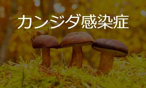 カンジダ感染症 Candida