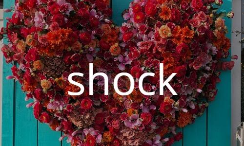 """ショック """"Shock"""""""