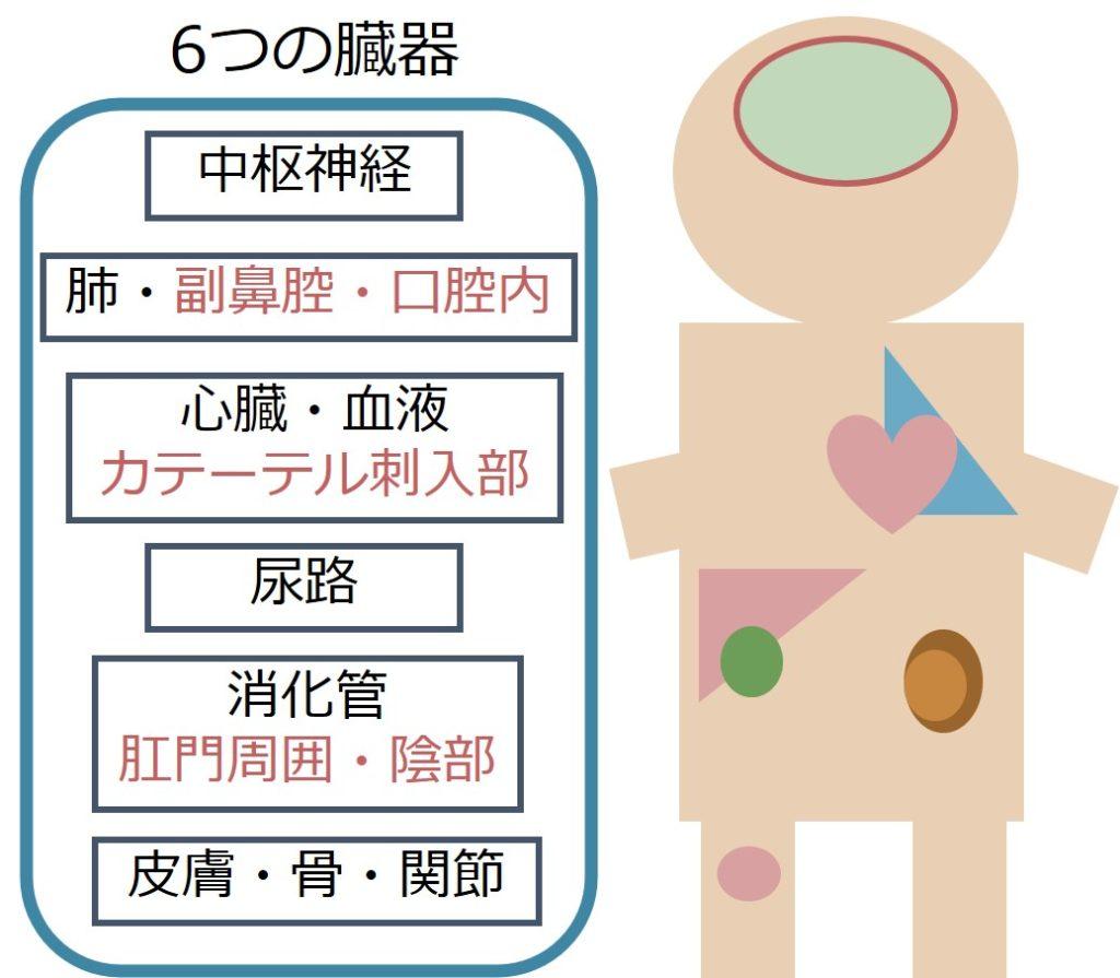 減少 中 球 症 ガイドライン 性 好 発熱
