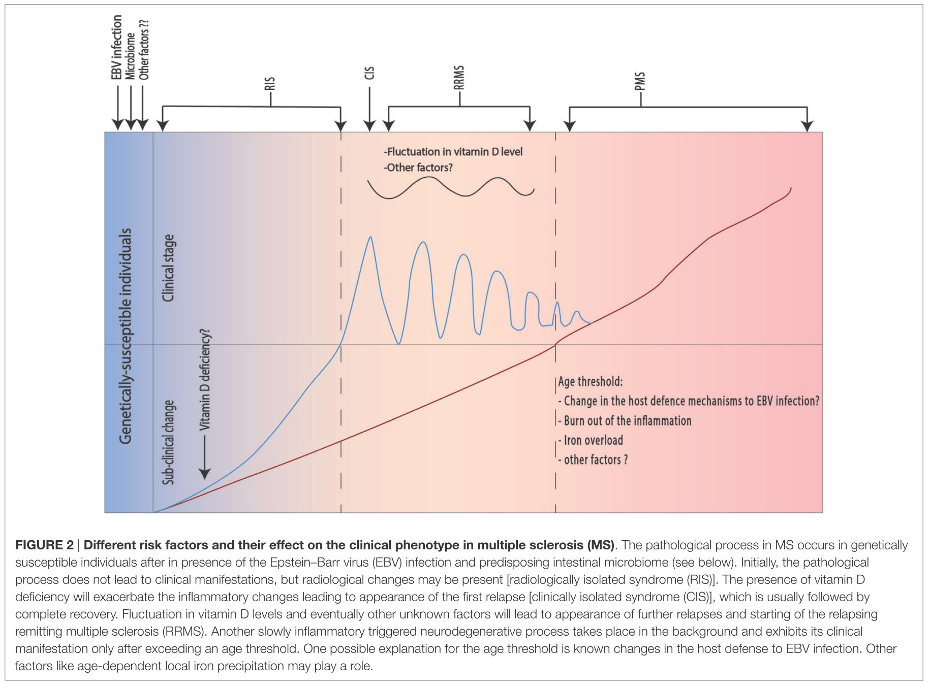 PPMS: primary-progressive multiple sclerosis 1次性進行型多発性硬化症
