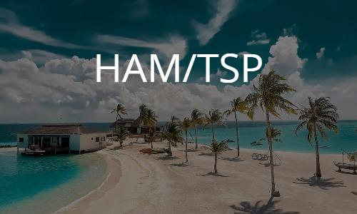 HAM/TSP: HTLV-1 associated myelopathy/tropical spastic paraparesis HTLV-1関連脊髄症