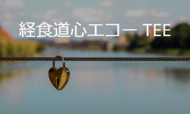 経食道心エコー検査 TEE: transesophageal echo